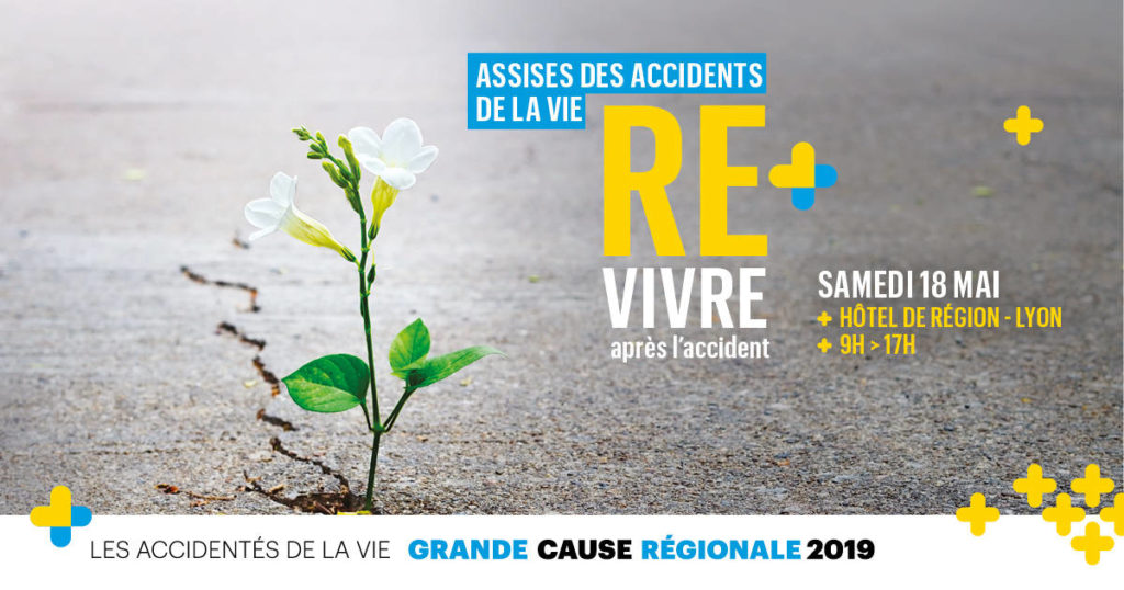 ACCIDENTES-VIE-Affiche-Web